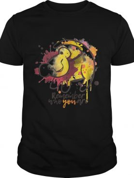 Lion King Remember who you are shirt