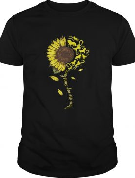 Sunflower You are my sunshine Horse T-shirt