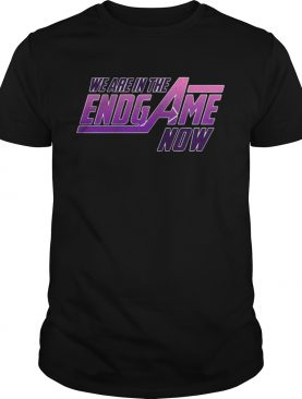 Official We Are In The Endgame Now tshirt