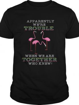 FlamingoApparently Were Trouble When We Are Together TShirt