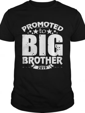 Promoted to Big Star Brother 2019 tshirt