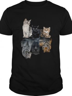 Cats always believe in yourself t-shirt