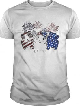 Fireworks Guinea Pigs 4th of July independence day American flag t-shirt