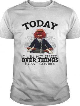 Muppet today I will not stress over things I can't control t-shirt