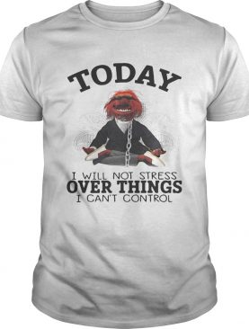 The Muppet today I will not stress over things I can't control t-shirt