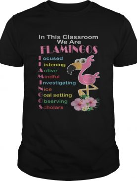In This Classroom We Are Flamingo Focused Listening Active Mindful T-Shirt