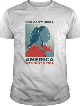 You can not spell america without erica t-shirt