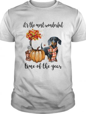 Dachshund its the most wonderful time of the year shirt