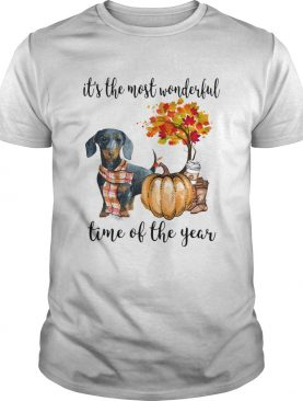 Dachshund pumpkin Its the most wonderful time of the year shirt