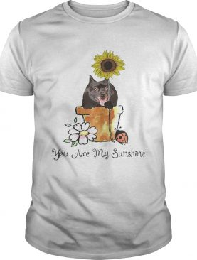 You Are My Sunshine Dog Lover Sunflower Tshirts
