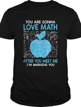 You are Gonna Love Math After You Meet Me Funny Teacher TShirt