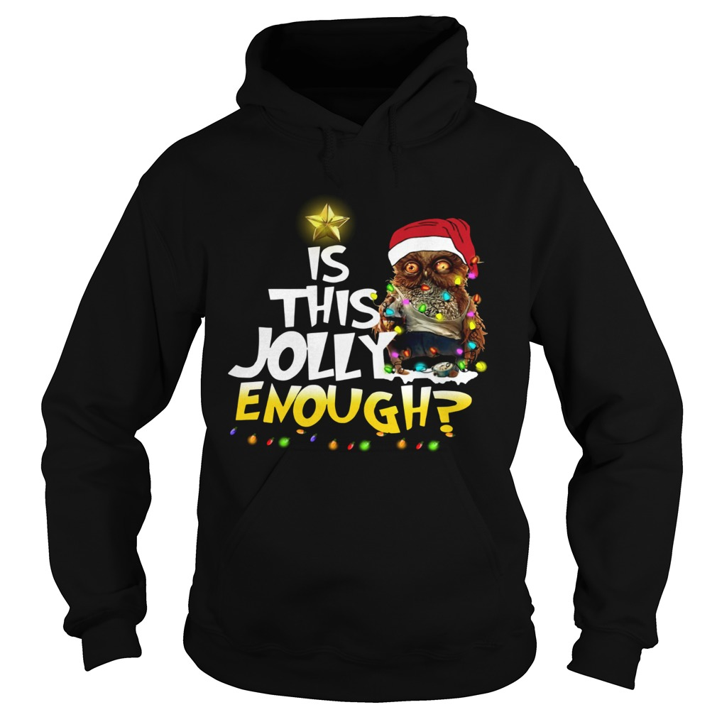 Owl Harry Potter is this Jolly Enough christmas Hoodie