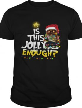 Owl Harry Potter is this Jolly Enough christmas shirt