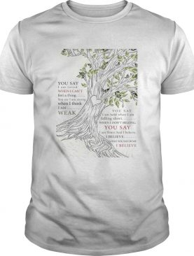 Lauren Daigle You Say I Am Loved When I Cant Feel A Thing shirt