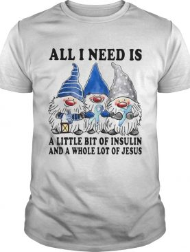 Gnomes All I Need Is A Little Bit Of Insulin And A Whole Lot Of Jesus shirt