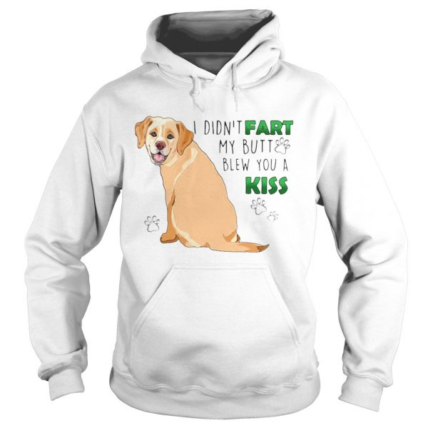 I Didnt Fart My Butt Blew You A Kiss  Hoodie