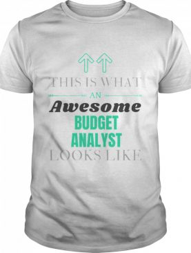 This Is What Awesome Budget Analyst Looks Like shirt